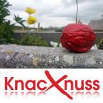Knacknuss – 31.05.2013