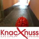 Knacknuss – 11.09.2015