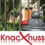 Knacknuss – 18.09.2015