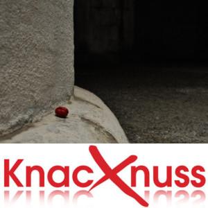 Knacknuss_151023
