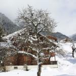 LEKTION 294: Skilager